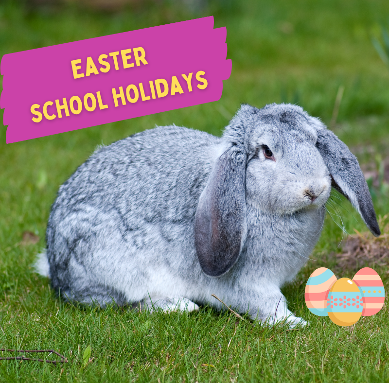 10 awesome school holiday activities